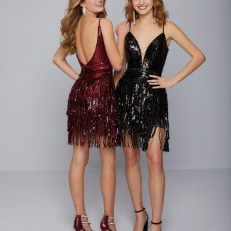 Sequin Fringe dress